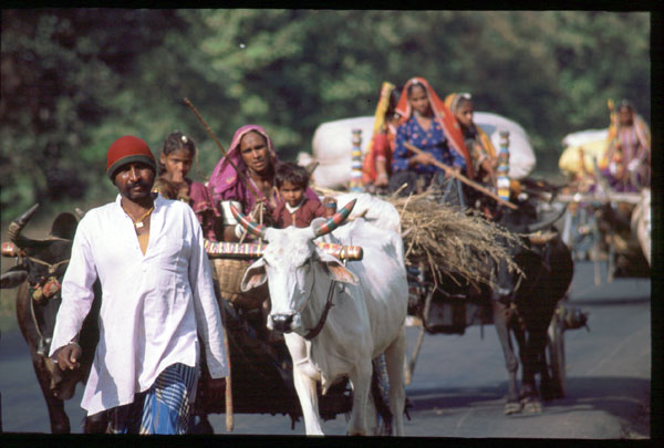 Photo of Indian nomads on the move, taken by  adventurer Jason Lewis while biking in India